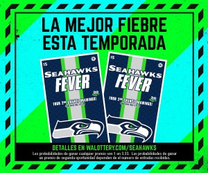 Seahawks—Digital-Media-CatchTheFever1 (002)